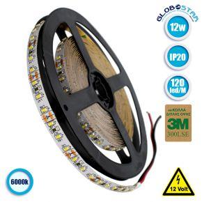 Ταινία LED 3014 SMD 5m 12W/m 120LED/m 1680 lm/m 120° DC 12V IP20 Ψυχρό Λευκό 6000k GloboStar 70050