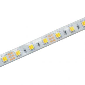 ACA Ταινία LED Με Εναλλαγή Φωτισμού CCT 12W IP65 12V DC 5 Μέτρα