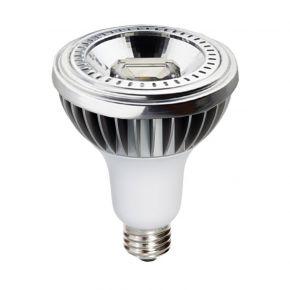 Dio LED Spot 15W E27 PAR30 COB Reflector Dimmable 20º