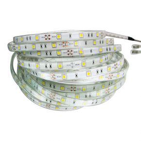 Eurolamp Ταινία LED 14.4W/m IP20 5m