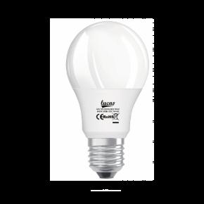 Lucas LED Λάμπα 9W E27 A60 ECO